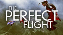 The Perfect Flight